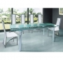 Frosted Glass Dining Table + 8 Dining Chairs